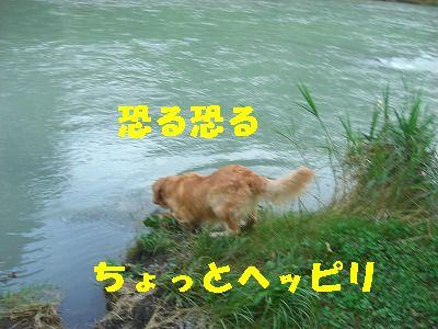 CIMG7568.jpg