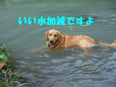 CIMG7576.jpg