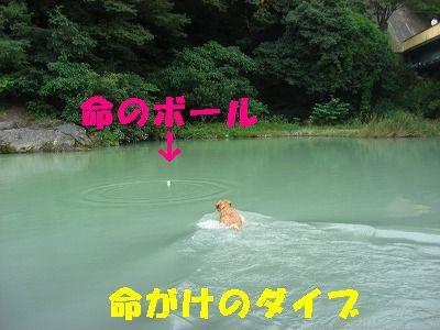 CIMG7594.jpg