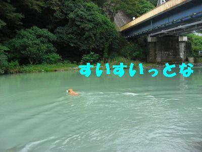 CIMG7595.jpg