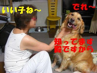 CIMG8255.jpg