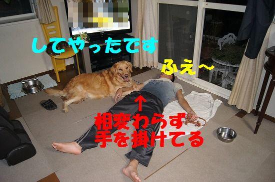 DSC02393.jpg