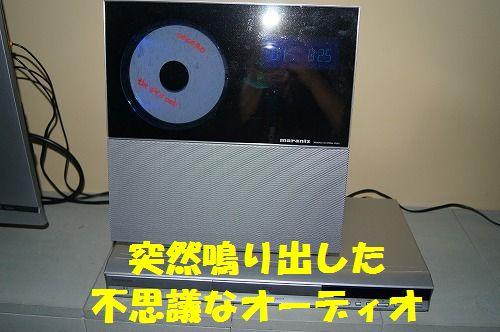 DSC04663.jpg
