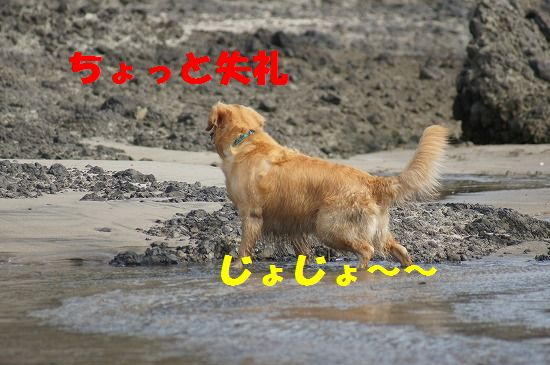 DSC05166.jpg
