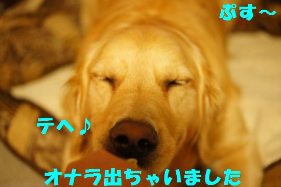 DSC06326.jpg