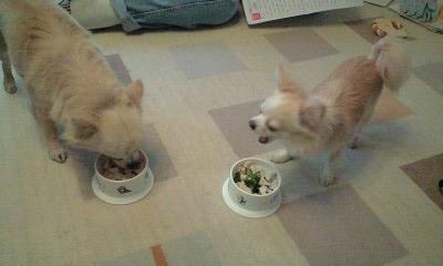 090127誕生日ディナーを食べるプリ・ベリ