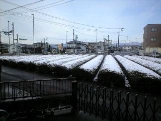 090304雪景色