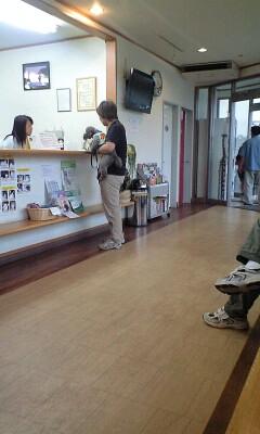 090614ノヤ動物園病院待合室