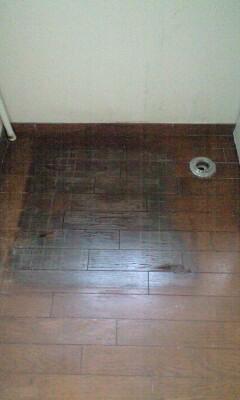090717洗濯機下の床