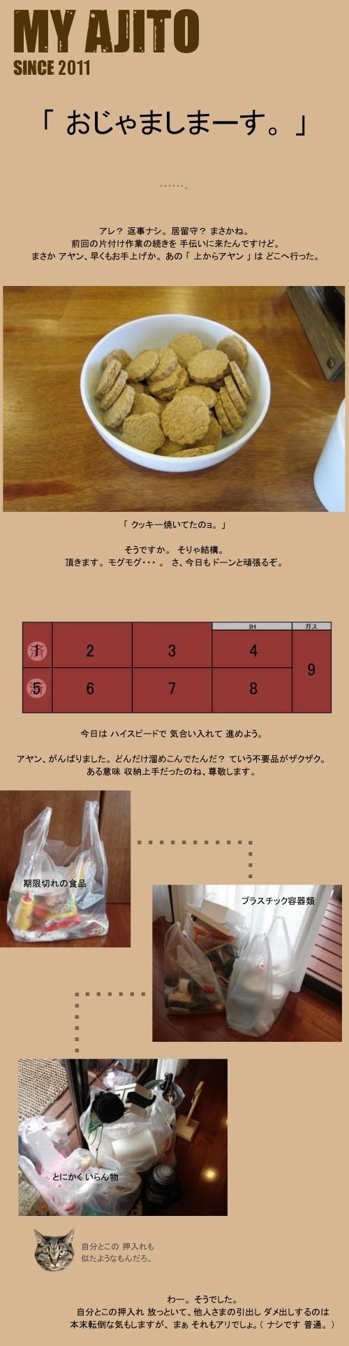 ayan_2nd_1.jpg