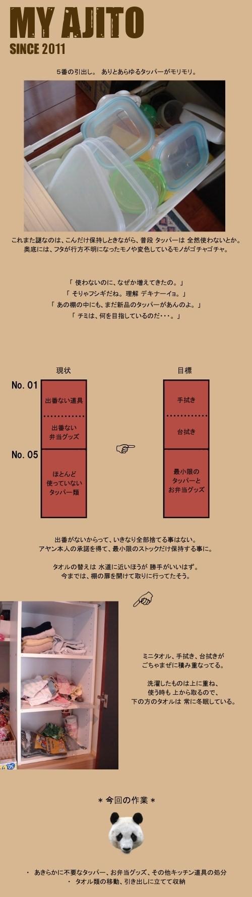 ayan_k1_5.jpg