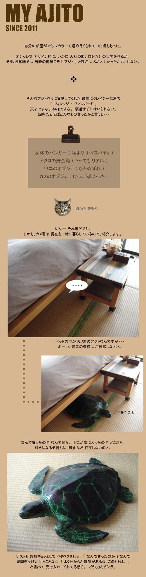 kame_wb_1.jpg