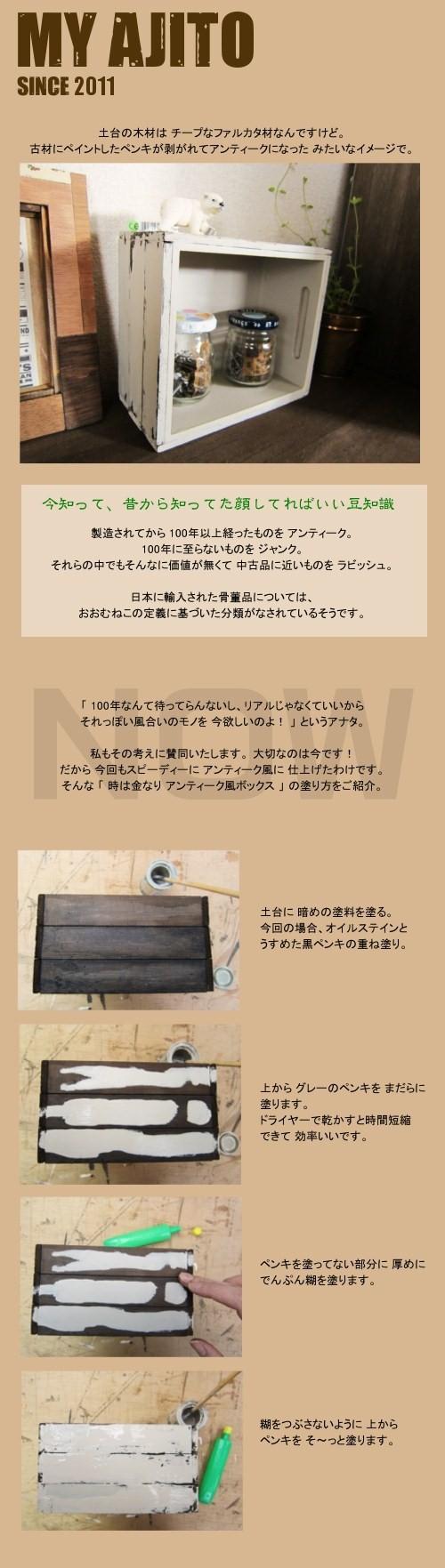 kame_wb_4.jpg