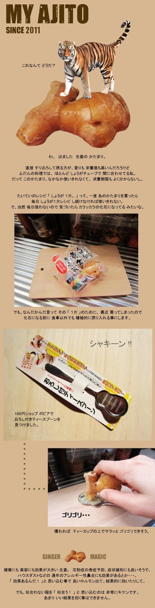 kota_sho_05.jpg