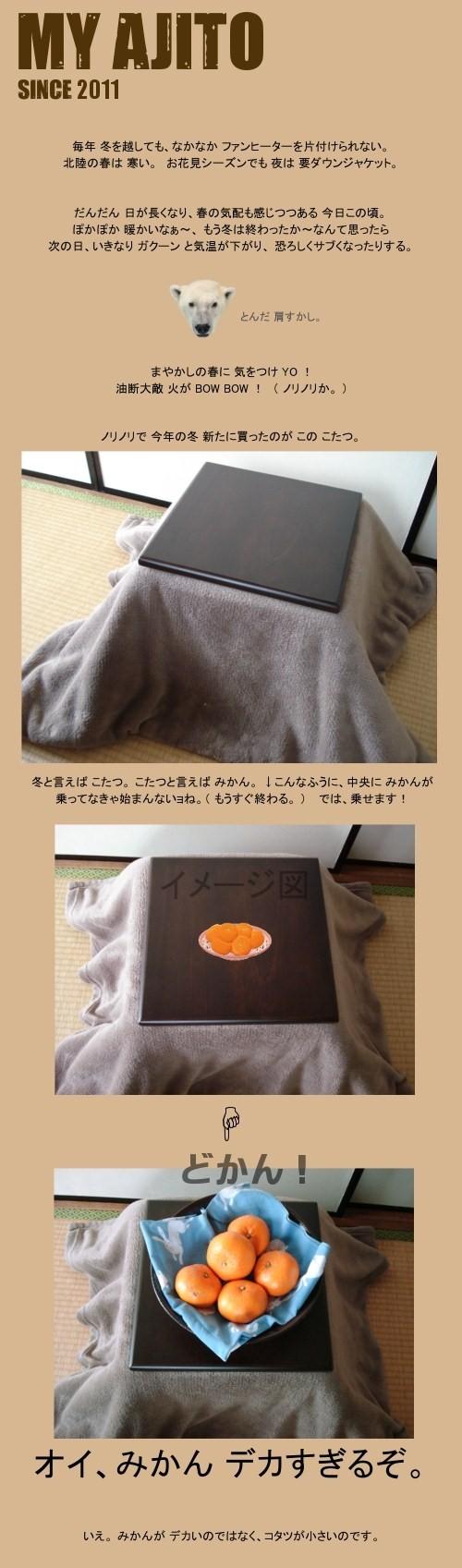 kota_sho_1.jpg