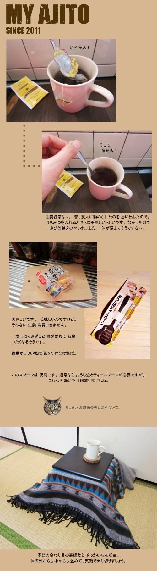 kota_sho_6.jpg