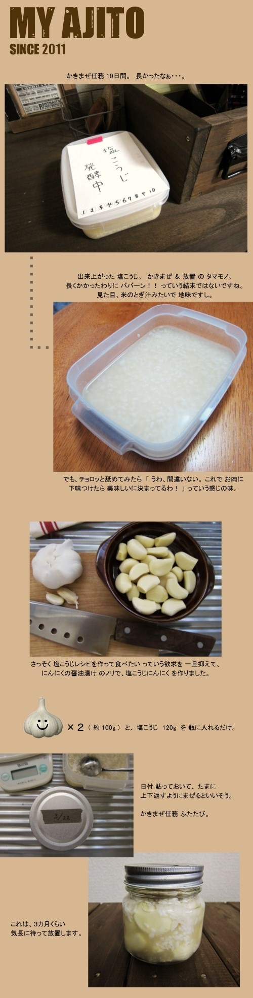 shioko_3.jpg