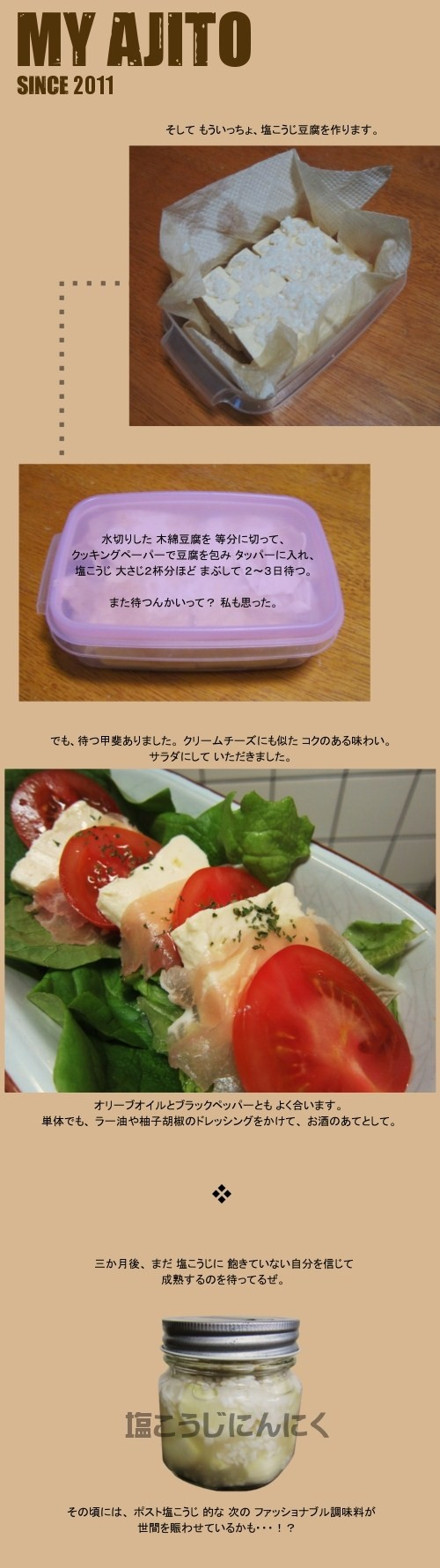 shioko_4.jpg