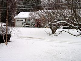 first snow_02
