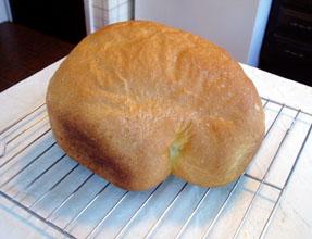 breadoshiri0304
