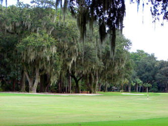 hiltonhead_golf02