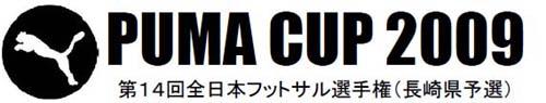 2008pumacup.jpg