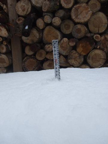 約15センチの積雪