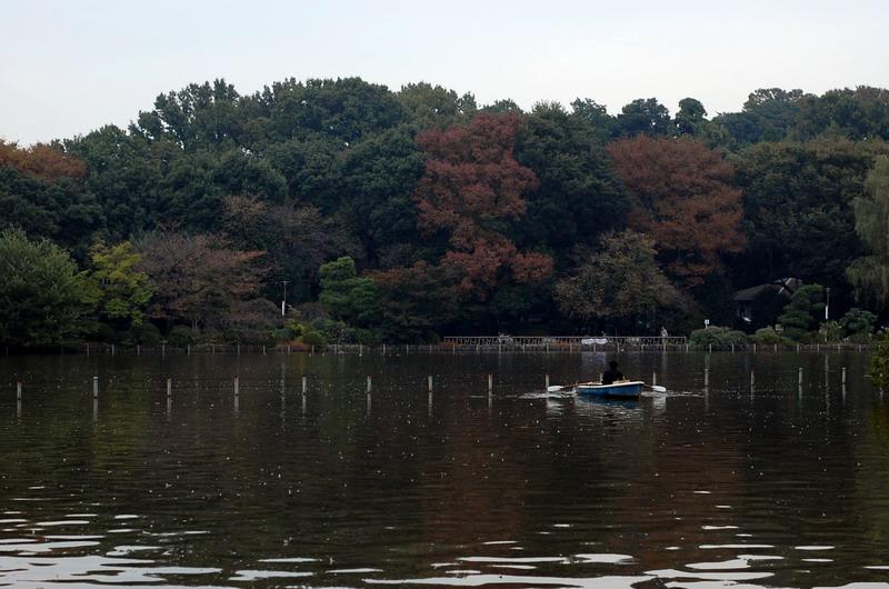 上池の紅葉1