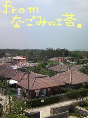 TS3C0101.jpg