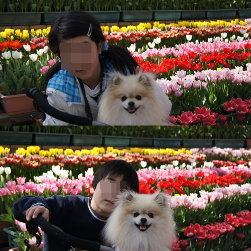 cats_20110226191103.jpg