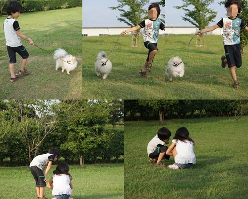 cats_20110731104735.jpg