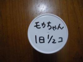 IMGP1573.jpg