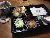 夏鈴のお弁当