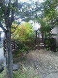 色づきはじめる庭201110