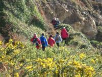 cliffwalk01114