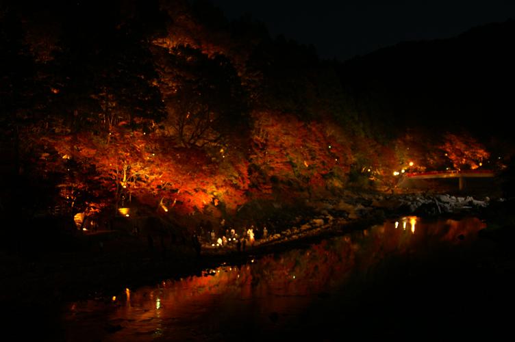 香嵐渓 夜 紅葉 2007