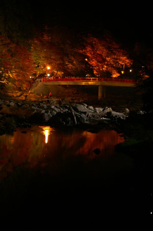香嵐渓 夜 橋 縦 紅葉 2007