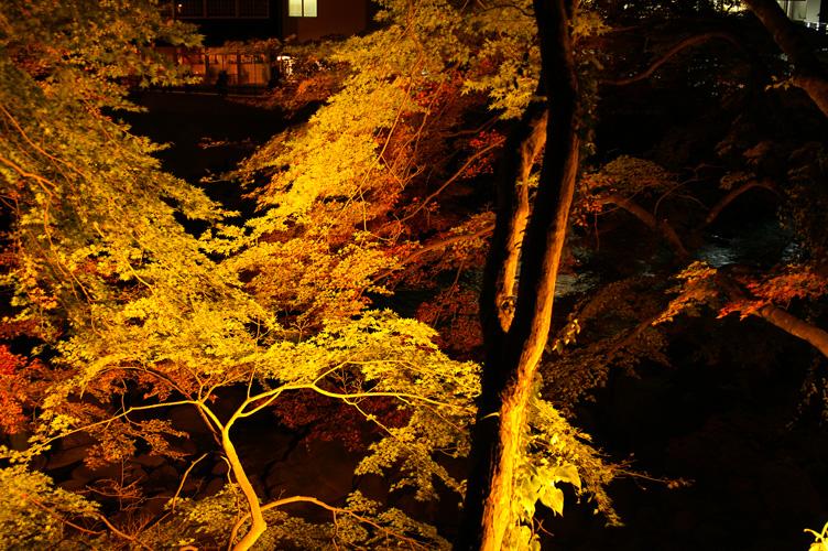 香嵐渓 夜 ライトアップ 紅葉 2007