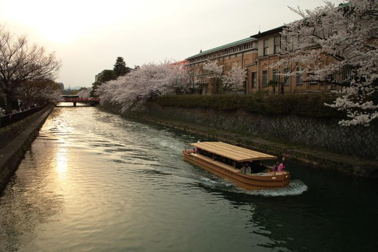 京都 琵琶湖疎水 船 美術館 夕焼け サクラ 橋