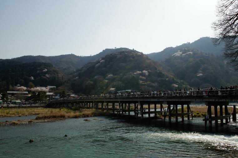 京都 嵐山 渡月橋 サクラ 川 山