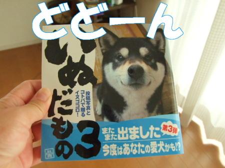 2008debut (3)