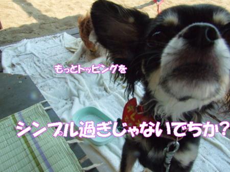 2008fukui (190)0000