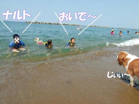 2008fukui (174)0000