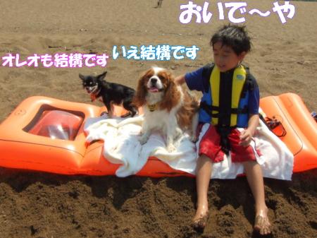 2008fukui (159)0000