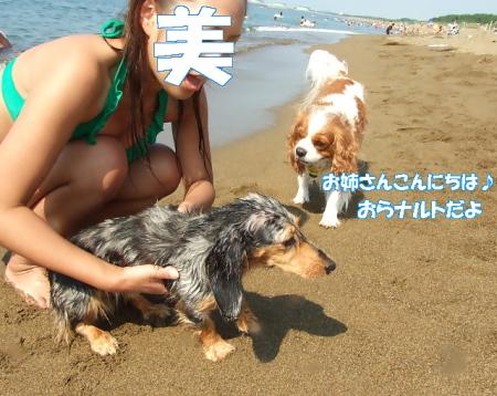2008fukui (198)