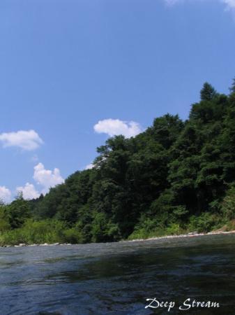 爽やかな渓
