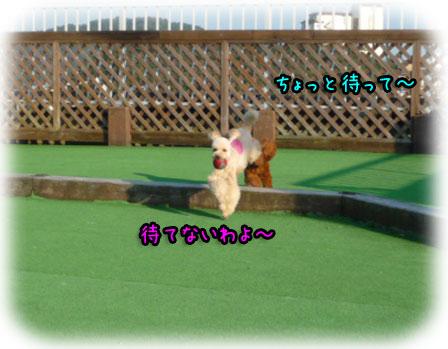 2008-10-15-100h.jpg