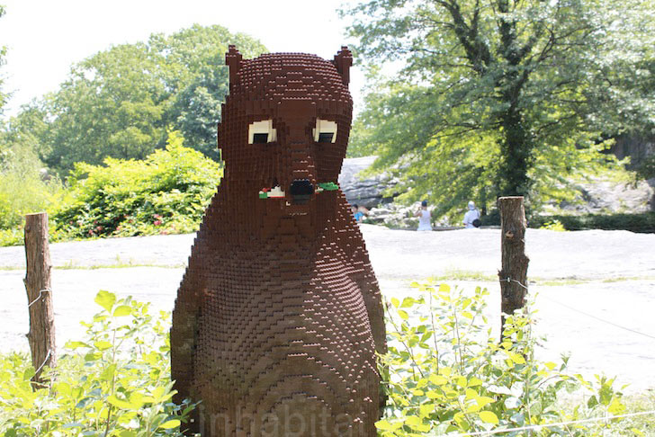 bronx-zoo-lego-bear.jpeg