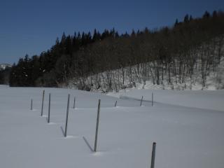 2012雪