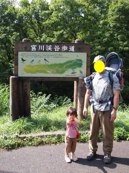 宮川渓谷1